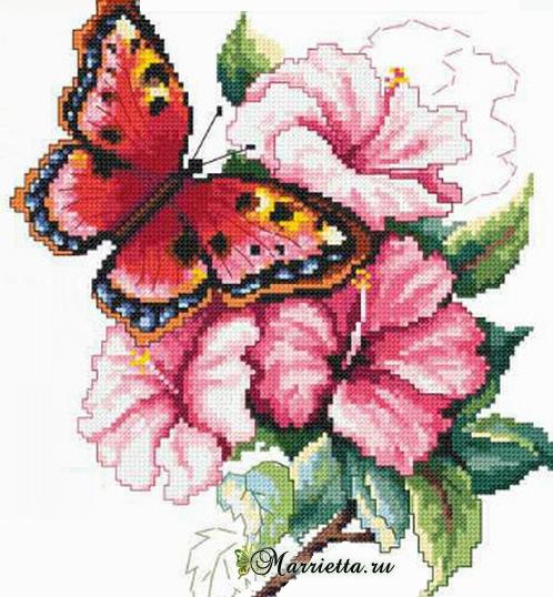 Схема вышивки «Красочная бабочка на цветах» (1) (498x538, 521Kb)