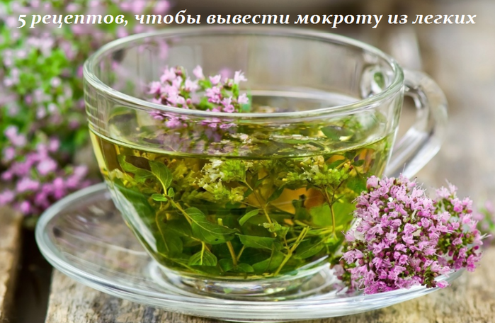 2749438_5_receptov_chtobi_vivesti_mokroty_iz_legkih (700x456, 512Kb)