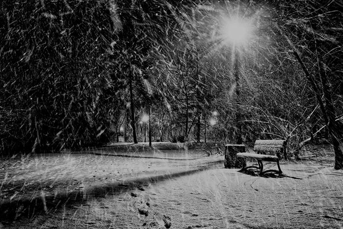 Kopie von Seasons_Winter_Parks_465814 (700x466, 269Kb)