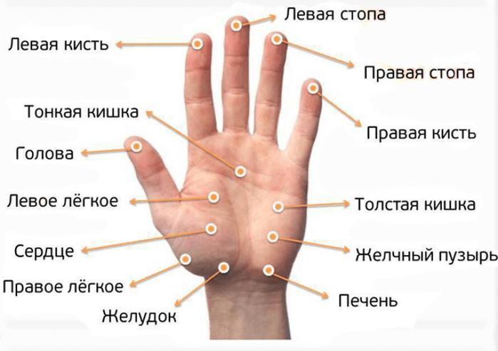 """alt=""""Массаж пальцев рук для похудения и не только""""/2835299_Massaj_palytsev_ruk_dlya_pohudeniya_i_ne_tolyko_tochki_na_palytsah_790x557 (700x493, 333Kb)"""