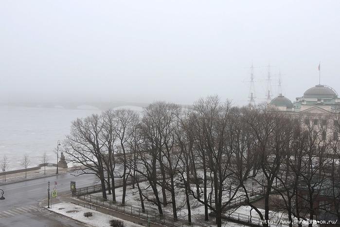 Питер, туман, анварь 2017 (700x466, 223Kb)