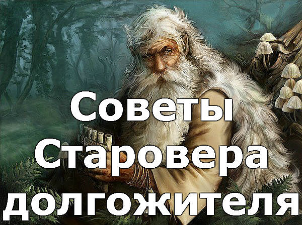 sovety (600x448, 111Kb)