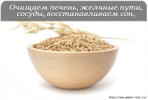 4403711_GaOjlmSYQiA3 (590x400, 81Kb)