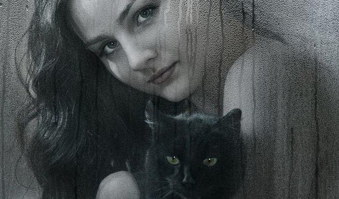 кот и дев (700x410, 73Kb)