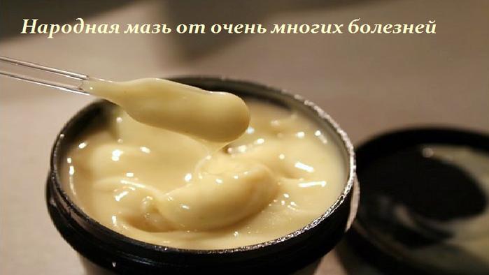 2749438_Narodnaya_maz_ot_ochen_mnogih_boleznei (700x394, 261Kb)