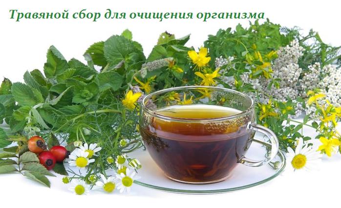 2749438_Travyanoi_sbor_dlya_ochisheniya_organizma (700x427, 447Kb)
