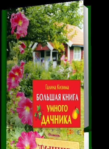 119551164_4027137_newproject_1_ (379x519, 438Kb)