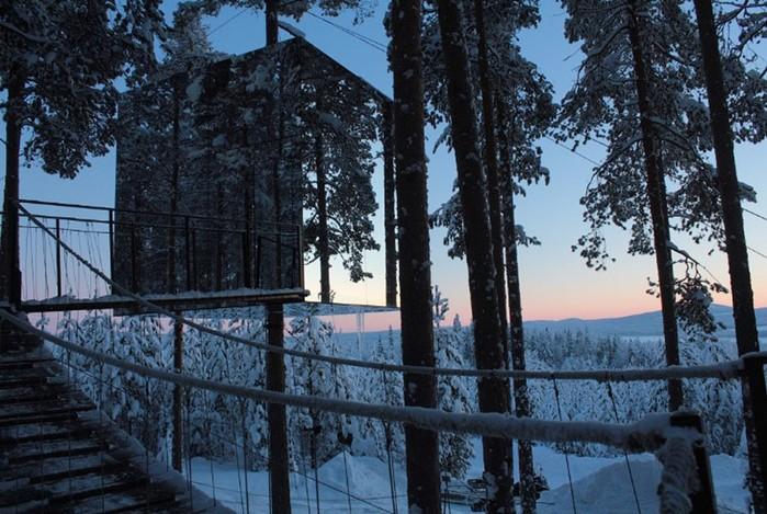 Дома-номера на деревьях в шведском отеле