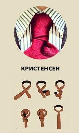 галстук 5 (259x434, 73Kb)