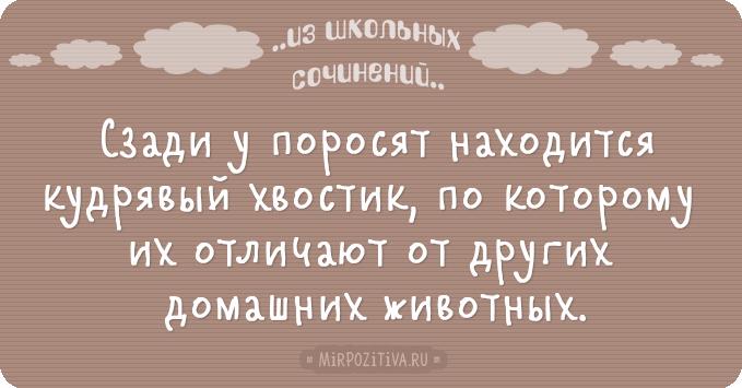 1485952592_016 (679x355, 165Kb)