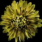 Превью All Natural (98) (650x642, 542Kb)