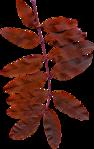 Превью All Natural (122) (440x700, 330Kb)