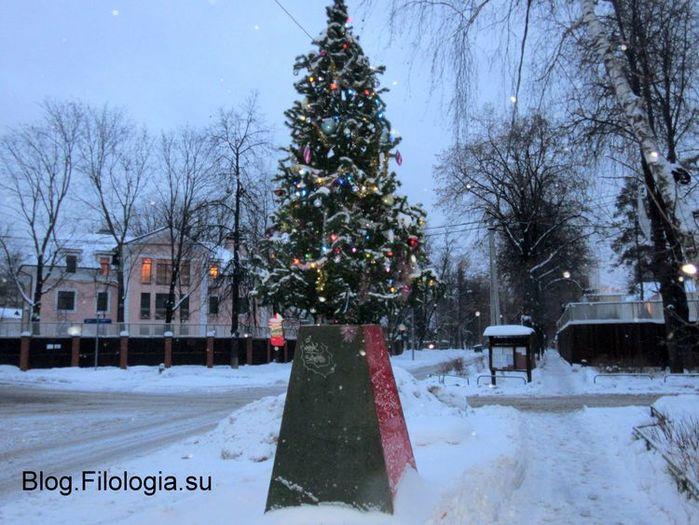 Наряженная елка на центральной площади поселка Сокол. Январь 2017 (700x525, 82Kb)