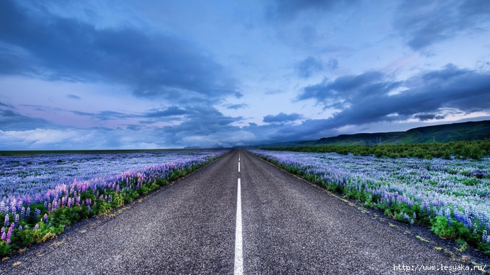 Iceland-Road-Desktop-Background (700x393, 254Kb)