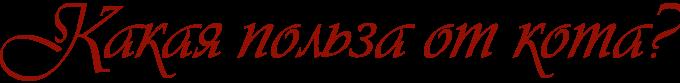 2835299_Kakaya_polza_ot_kota (680x83, 12Kb)