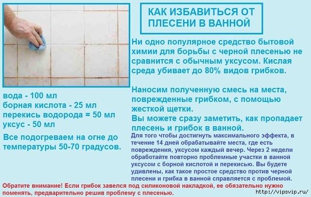 5745884_plesen_soveti (640x406, 209Kb)