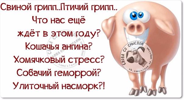 1454958429_frazki-4 (604x331, 205Kb)