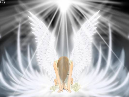 11642729_6403926_4625166_4286236_4052287_normal_Angel28s29 (533x400, 27Kb)