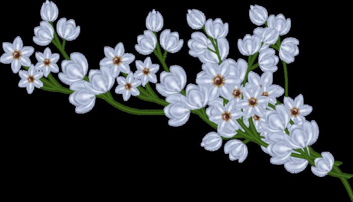 bsd_Floral Elegance_ Element (33) (700x402, 240Kb)