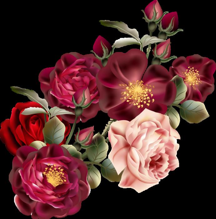 Beautiful Roses #4 (01) (691x700, 451Kb)