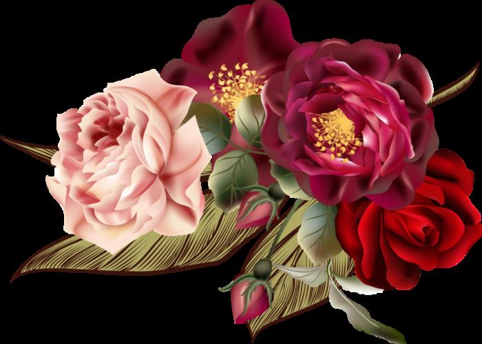 Beautiful Roses #4 (02) (700x499, 356Kb)