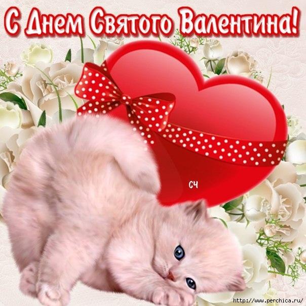 4979645_prikol_nye_pozdravlenija_na_den__svjatogo_valentina (604x604, 205Kb)