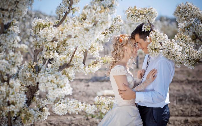 zamechatelnye-idei-svadebnoj-fotosessii-vesnoj (700x437, 382Kb)