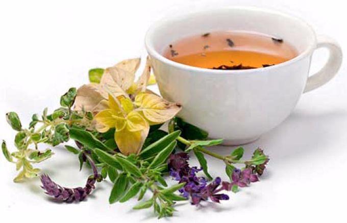 чай из трав (680x438, 176Kb)