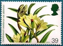 Орхидеи 1 (219x162, 23Kb)