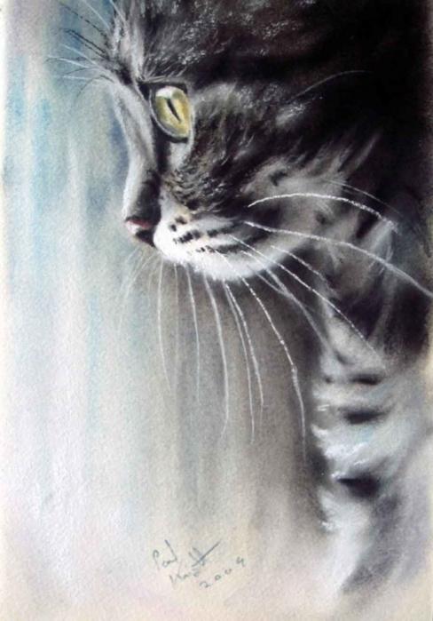 Стихи в память кошке/4706758_stihivpamyatkoshke714x1024_1 (488x700, 199Kb)