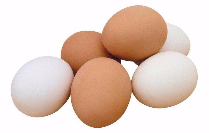 куриные яйца от болезней (700x445, 119Kb)