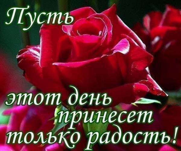 3768849_voskr_ytro__ (600x498, 50Kb)