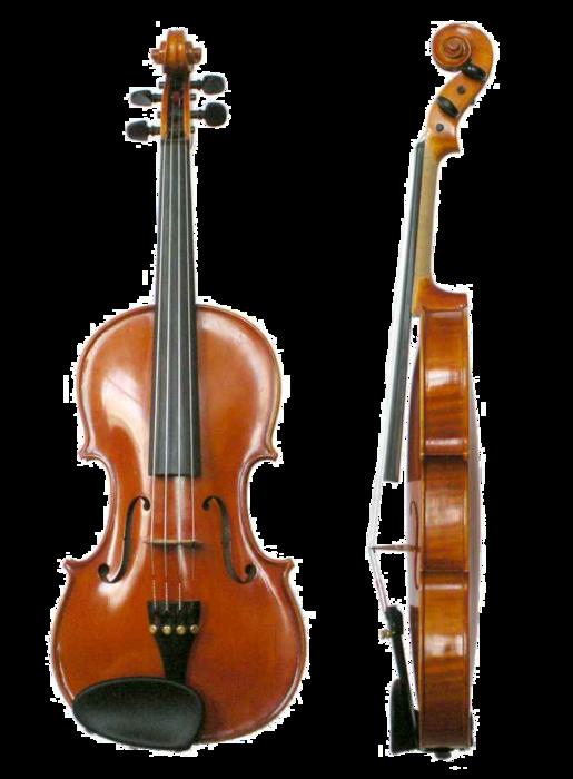 Violin_VL100 (515x700, 255Kb)