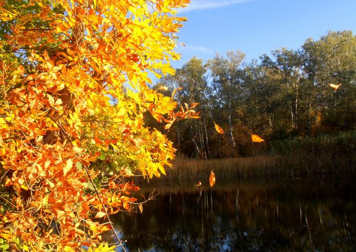1-28 сентября 2012 пейзажи 032 (700x495, 609Kb)