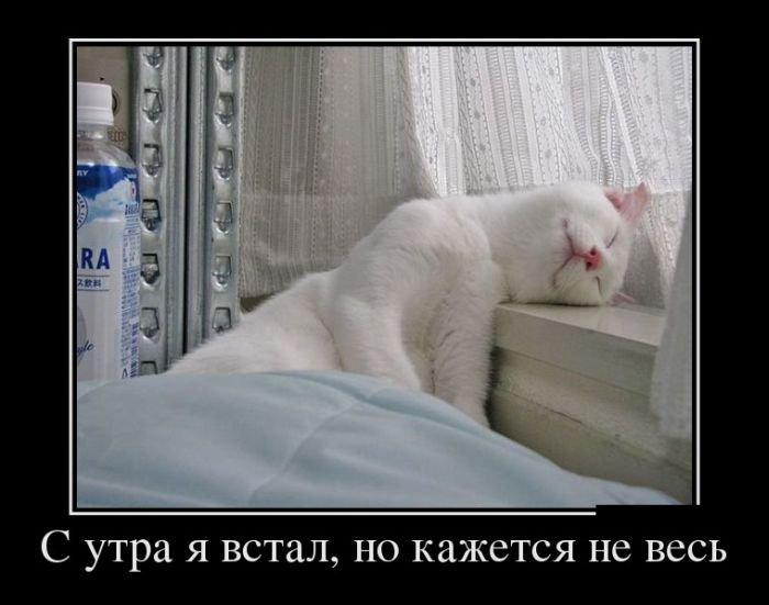 demotivatory_na_chetverg_30_foto_19 (700x551, 50Kb)