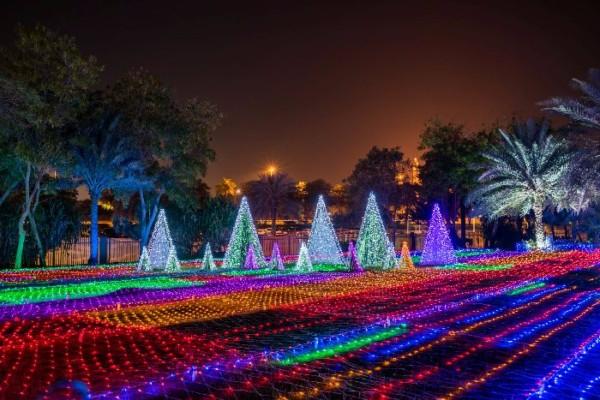 Светящийся-сад-в-Дубаи-Dubai-Garden-Glow-14 (600x400, 287Kb)