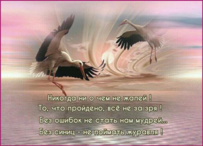 PicsArt_1487600741384 (699x504, 222Kb)