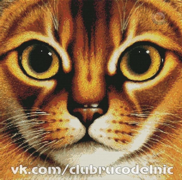 CAT (700x693, 830Kb)