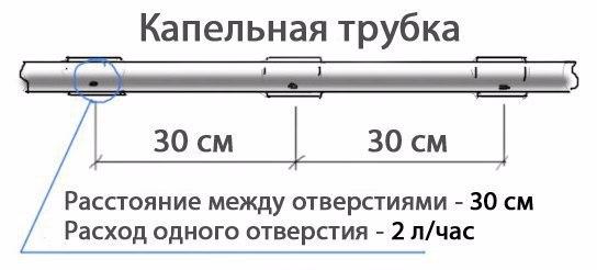 5 (544x246, 70Kb)