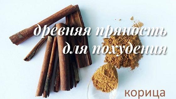 korica-dlya-poxudeniya-01 (560x315, 159Kb)