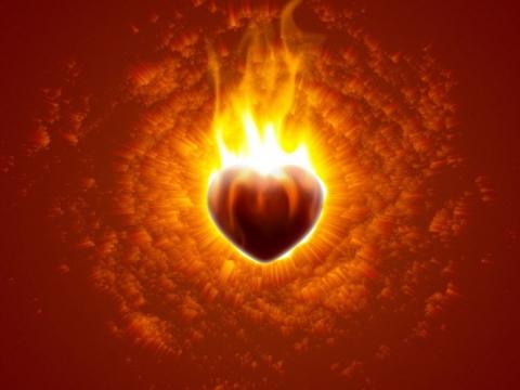 сердце матери (480x360, 105Kb)