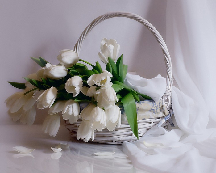фотонатюрморт цветы 19 (700x560, 269Kb)