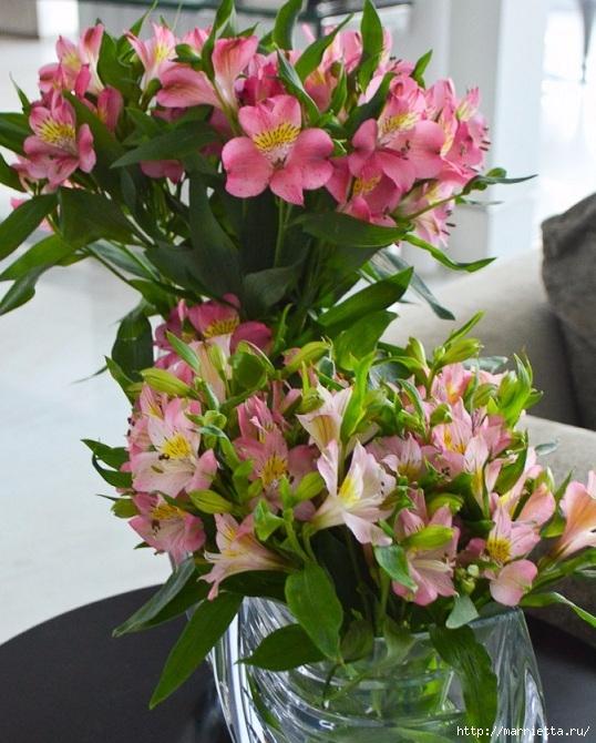 Цветы для вас (74) (538x670, 255Kb)