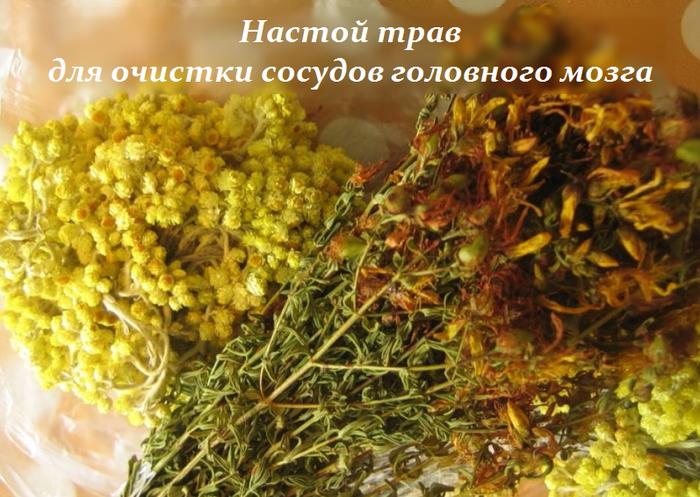 2749438_Nastoi_trav_dlya_ochistki_sosydov_golovnogo_mozga (700x497, 599Kb)