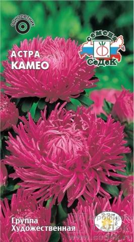 astra_kameo (266x481, 197Kb)