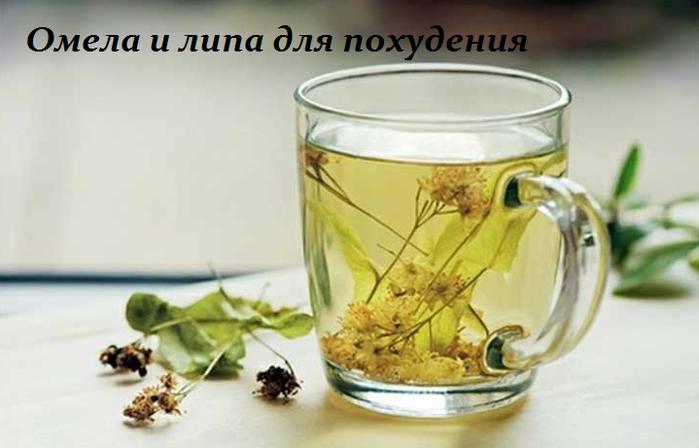 2749438_Omela_i_lipa_dlya_pohydeniya (700x448, 285Kb)