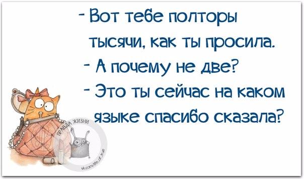 1429387535_frazki-5 (604x356, 160Kb)