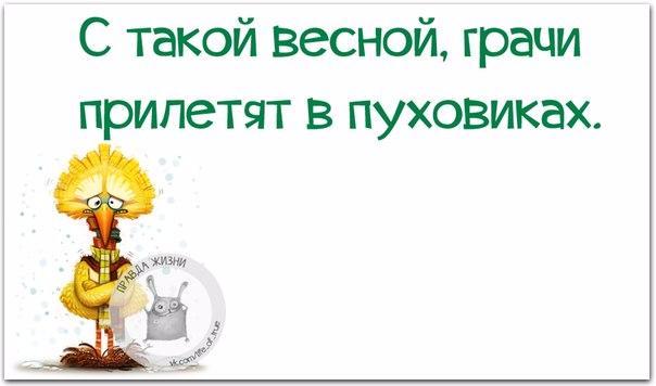 1429387612_frazki-17 (604x356, 119Kb)