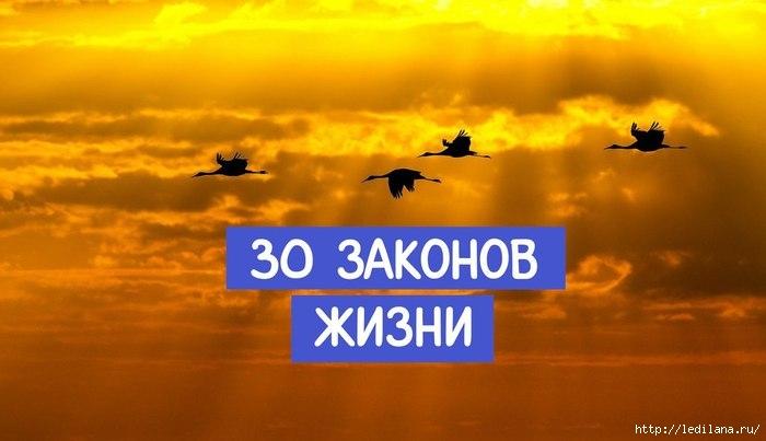 3925311_30_zakonov_jizni (700x403, 127Kb)