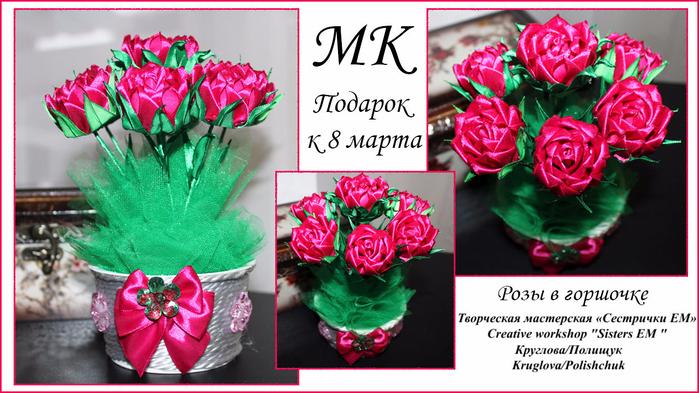 роза в горшке (700x393, 382Kb)